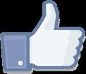 פייסבוק לייק