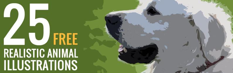 חיות מצוירות – סט של 25 תמונות להורדה